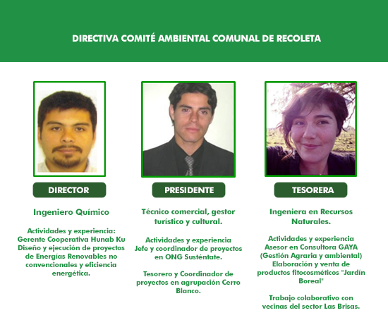 comite ambiental comunal_3
