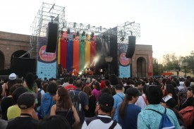 WOMAD 4